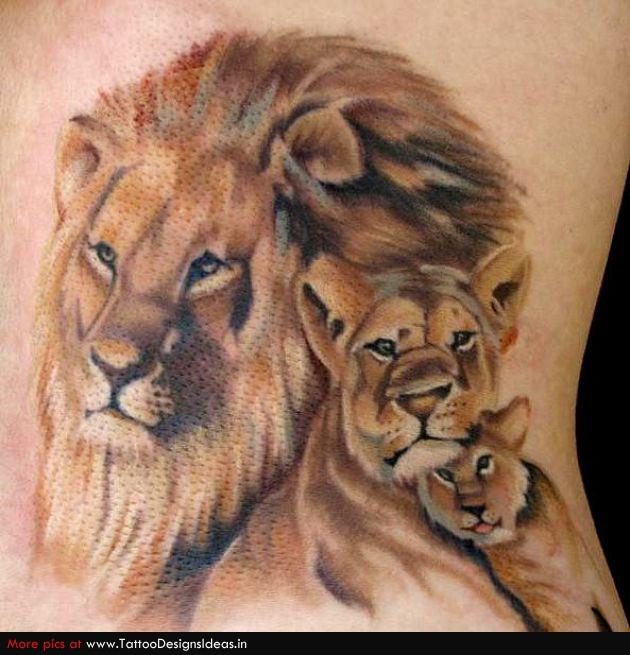 Lion Face Images Stock Photos amp Vectors  Shutterstock